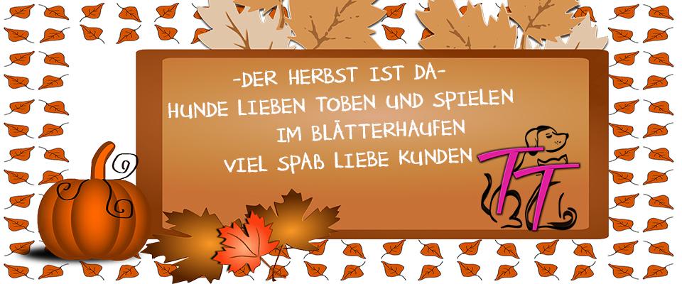 Toben, Rennen, Gute Laune - Auf in den Herbst